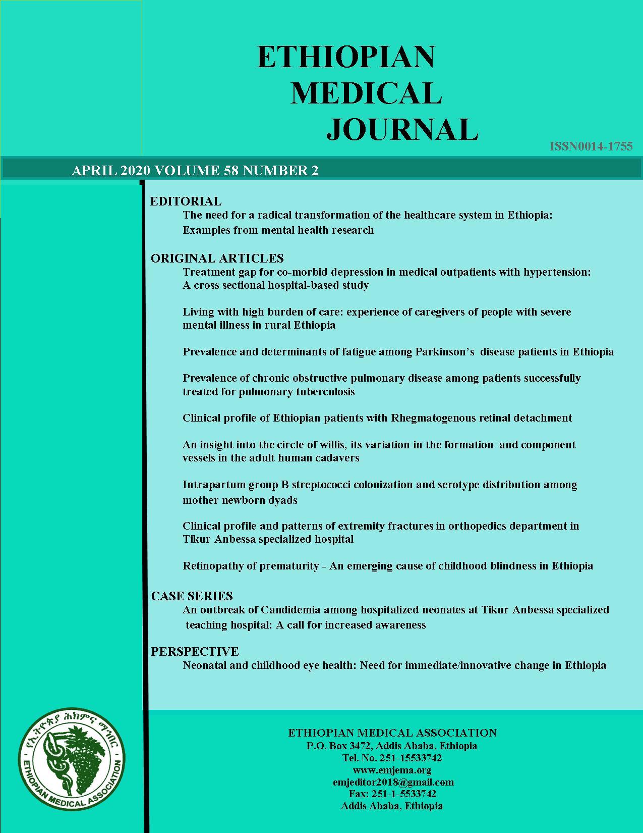 View Vol. 58 No. 02 (2020): EMJ April Regular issue